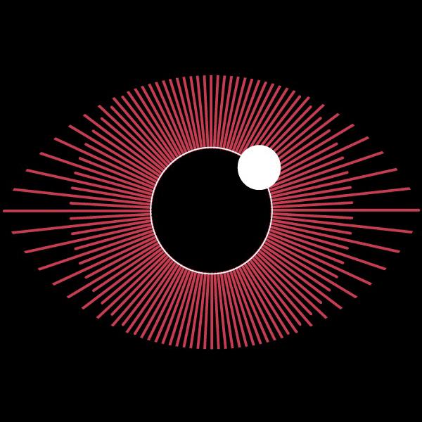 lbb12_eye